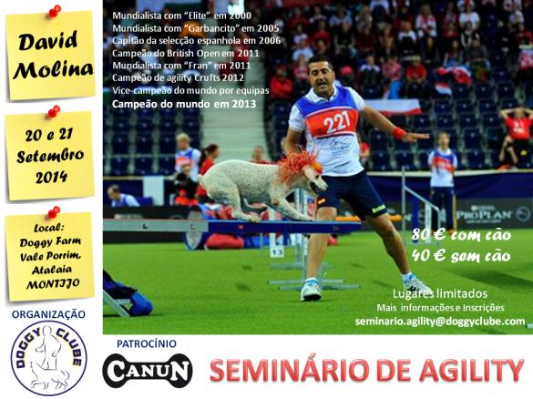 Flyer Seminário Agility Set 2014 site